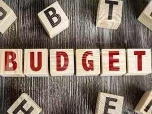 Officially it's an interim Budget on February 1: Fin Min officials