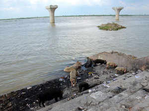IL&FS crisis not to affect Rs 10,000 crore clean Ganga projects
