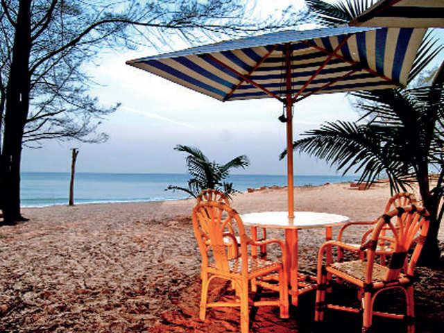 Dapoli: A winter haven in the heart of Konkan