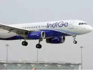 indigo-in-flight-indi