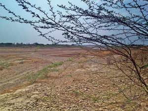 land-agencies