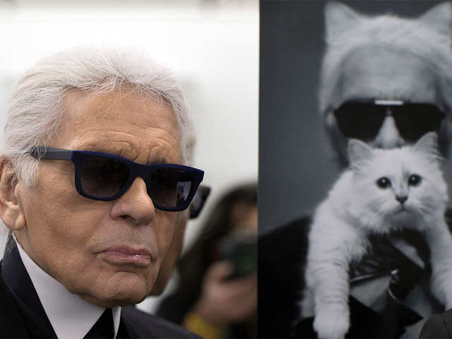 The cool cat: Karl Lagerfeld's pet may inherit estimated $200-million fortune