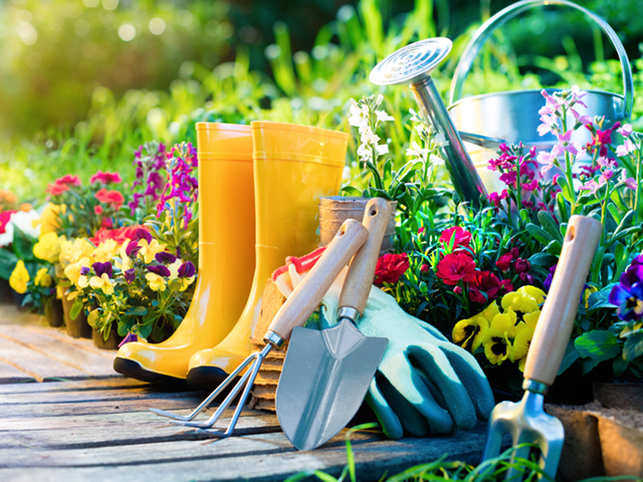 Gardening, singing & reading can keep your mind active, and lower dementia risk
