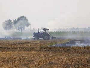 crop-burning-pti