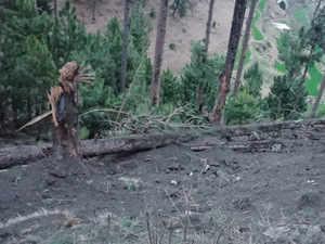 Indian air strike in Balakot killed 300 militants: Sources