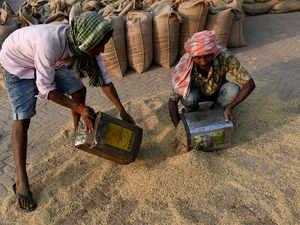 Rice-Paddy-AFP