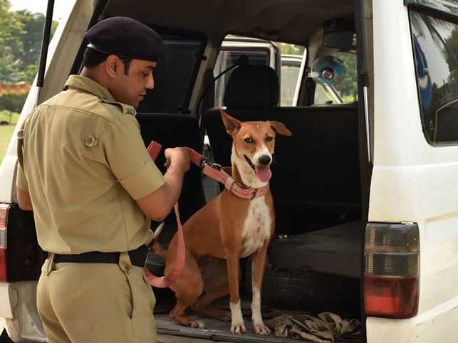 As A Stray Joins Kolkata Police Inducting Them Worldwide As