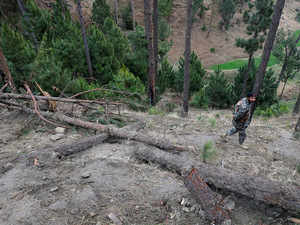 Pakistan registers FIR against IAF pilots for bombing trees: Report