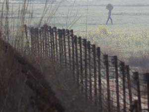 J-K: One jawan killed in ceasefire violation by Pakistan in Sunderbani sector