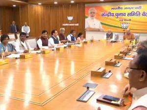 LS polls 2019: BJP to field fresh candidates on all 11 seats in Chhattisgarh
