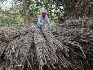 Indian-Farmer---AFP