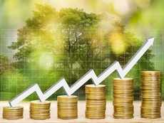 Invesco India Contra Fund: Fund Review