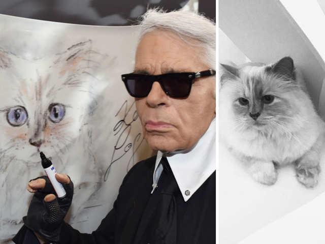 Cat Rich List Wealthy Felines Of Taylor Swift Karl Lagerfeld Benjamin Button The Economic Times
