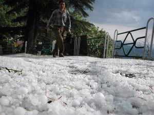 hailstorm-BCCL