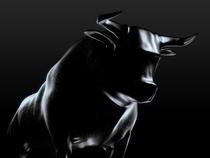 Bull1-Getty-1200