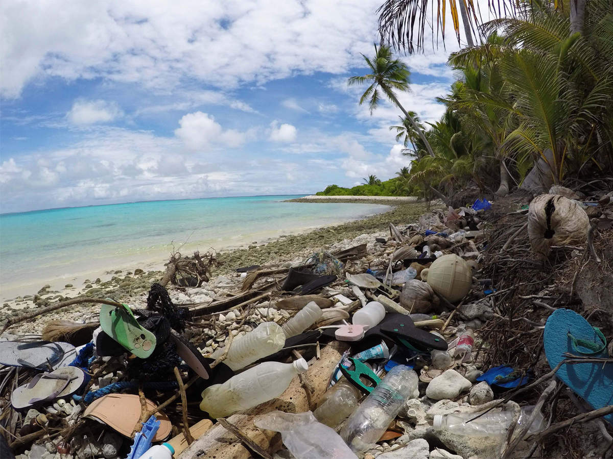 Top 12 Marine Pollution Meaning In Telugu - Gorgeous Tiny