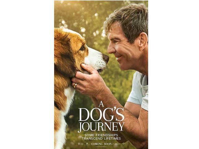 dogs-journey.jpg