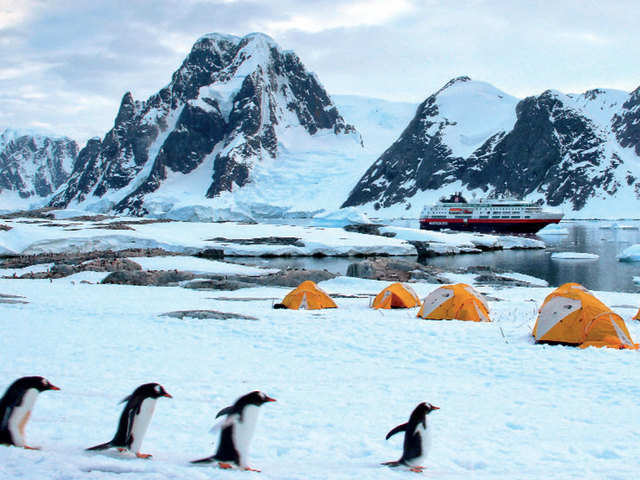 On the high seas: This summer vacation opt for a cruise expedition to Antarctica basecamp