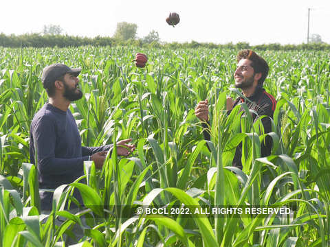 Meet the farmers with engineering, MBA degrees