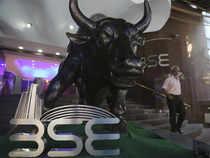 BSE-bull---AP