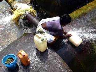 drinking-water-ani