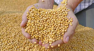 soybean futures