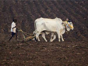 Farming---ANI