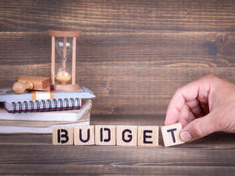 Government mulling budget sops to put its house in order