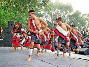 Nagaland organisations concerned over PIL on inner line permit