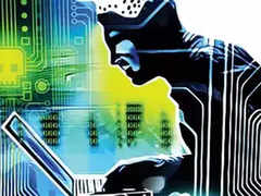 cyber security: Estonia open to assist India on cyber security - The