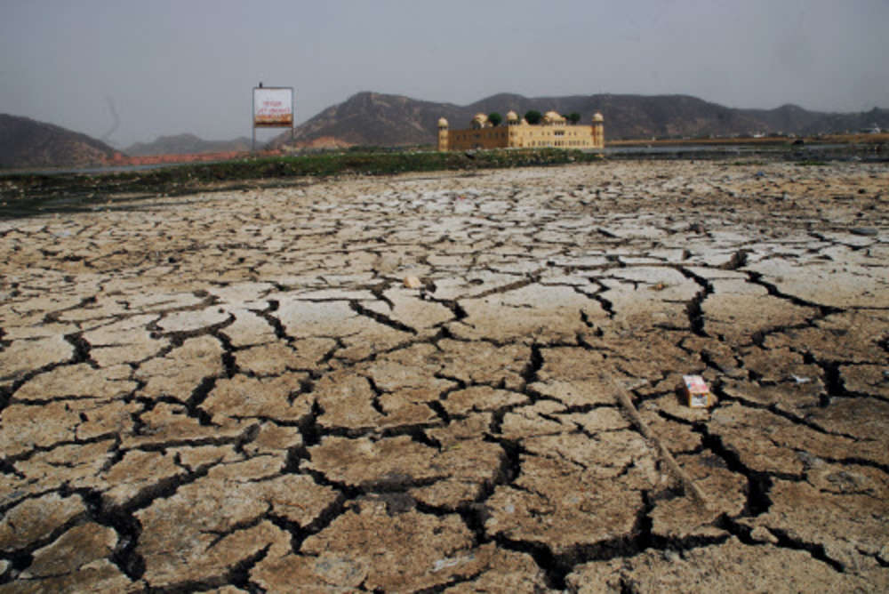 India to host UN conference on combating desertification