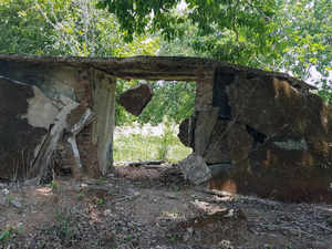 Forces gun down Naxal wanted in killings of BJP MLA and four cops in Chhattisgarh