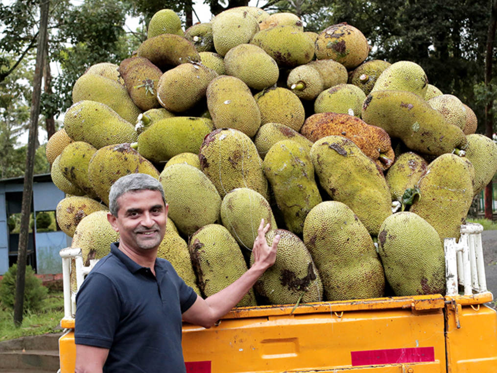 James and the jackfruit: how a Microsoft executive stumbled into a nutty startup idea