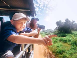 safari_iStock