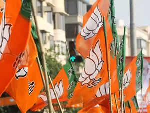 BJP-polls