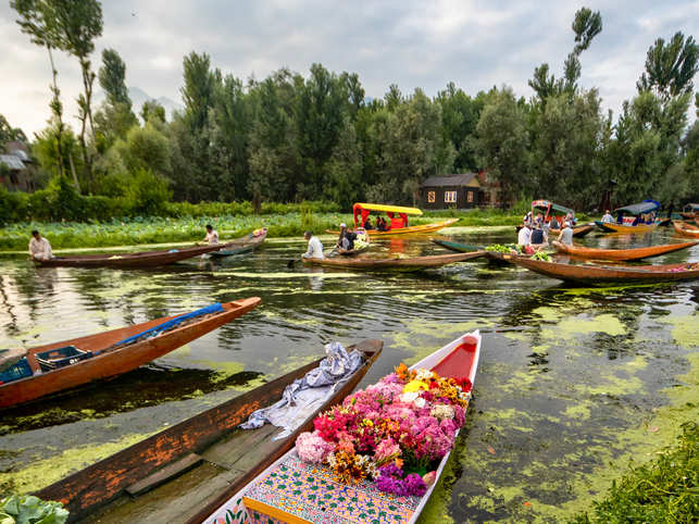 Kashmir-Dal Lake_iStock