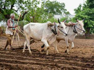 Farmer---PTI