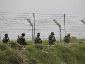 BSF South Bengal struggling to maintain seized cattle