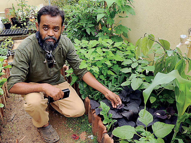 Art teacher moonlights as ecological pioneer; grows seasonal, leafy greens to make Bengaluru healthy