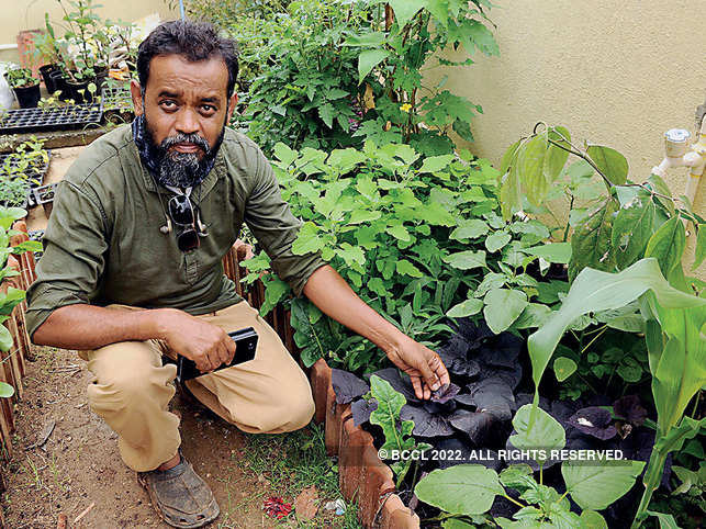 Suresh Kumar shows the purple variety of the Amaranthus family (dantu soppu in Kannada) at his garden in Volagerekallahalli.