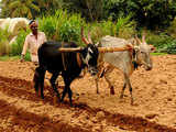 Banks suggest easier farm loan rules to remove stress