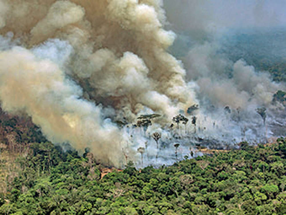 New fires in Amazon as army fights blazes