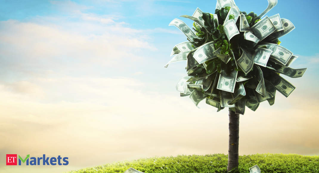 12 money-making ideas that can deliver solid returns in 4 weeks - Economic Times thumbnail