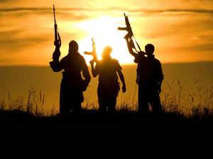 Terror---agencies