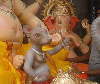 Mouse in the house: How the world reacts to Lord Ganesha's vehicle of choice