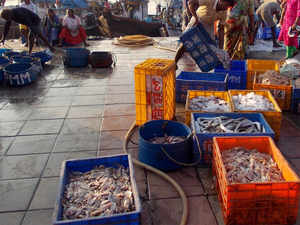 India International seafood show to be held in Kochi in