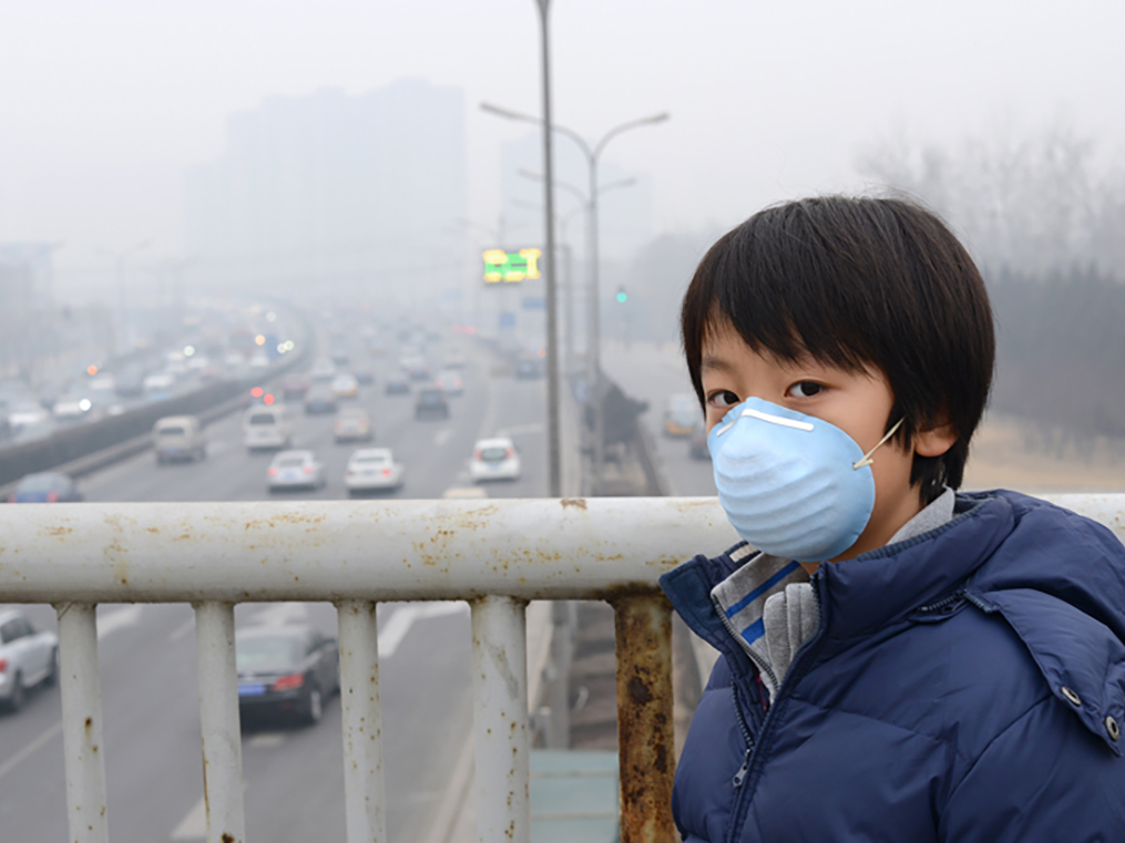 Curbing greenhouse gases: China plans to build the world's largest national carbon trading market