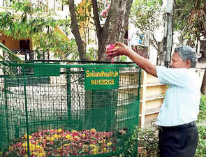 Moving to compost: Floral waste turns fertile ground for innovation in Bengaluru