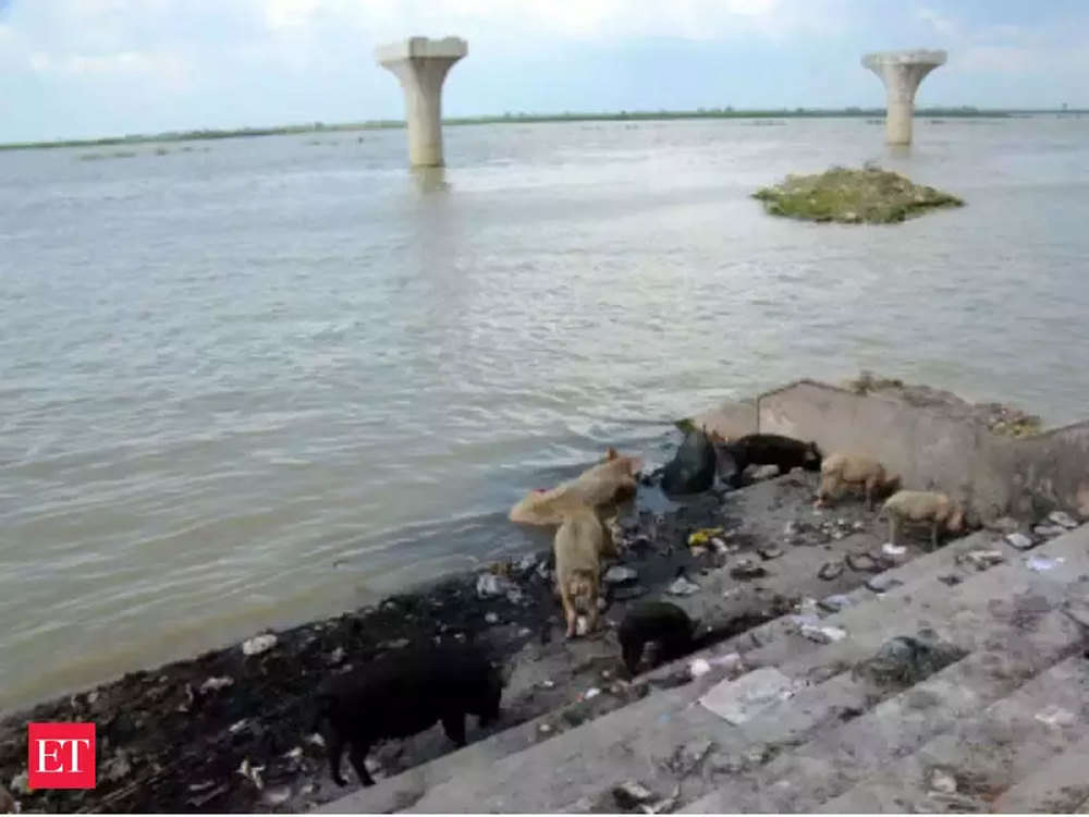 India has developed first catchment treatment plan for Ganga to meet climate goal: Official