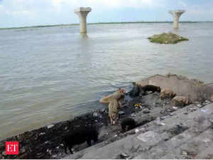 Ganga-Clean-Up